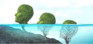 áreas de la psicología educativa
